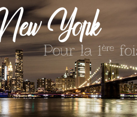 skyline de new york depuis brooklyn park
